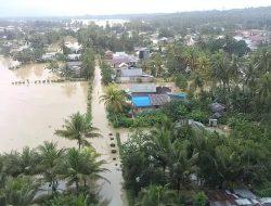 Banjir Rendam 1 Desa dan Lahan Pertanian di Donggala